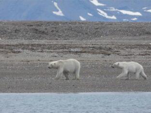 Do granicy lodu 1 30.06-11.07.2021